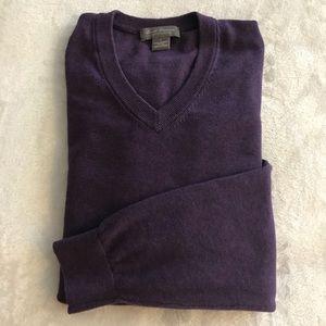 Men's Daniel Cremieux V-Neck Long sleeve Sweater